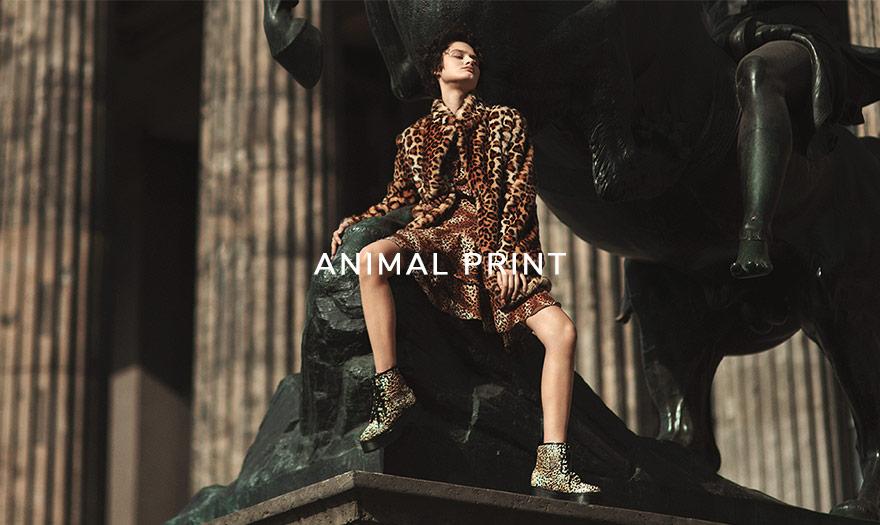Animal print 2019