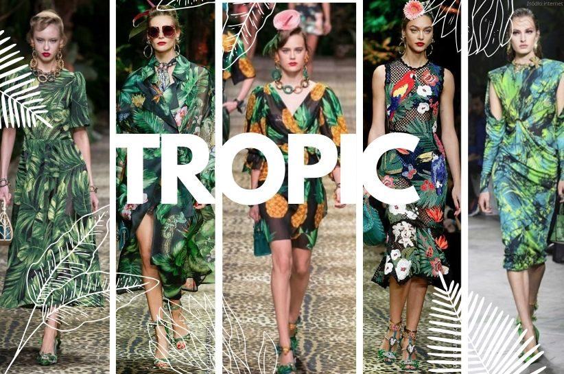 tropikalne wzory jak nosić